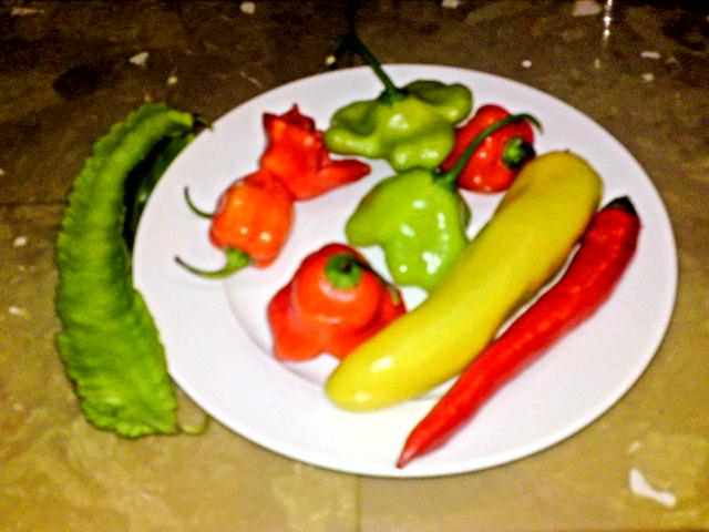 タイの野菜
