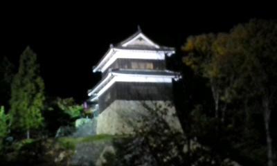 夜の上田城